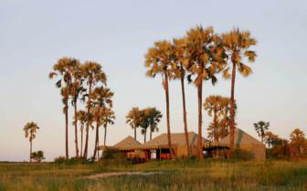 Tents at sunset at Jacks Camp