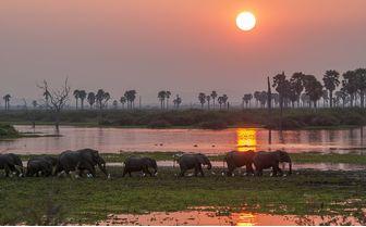 Selous_river_sunset