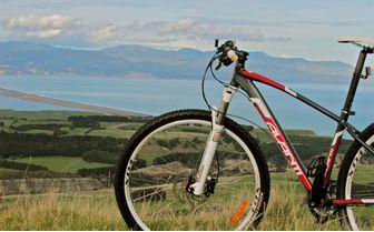 wharekauhau_bike_ride_view