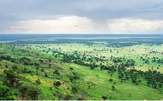 bwindi impenetrable forest panoramic view