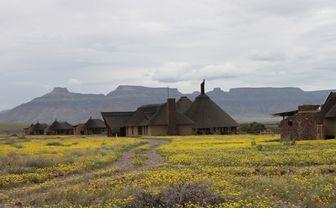 hoodia desert lodge gardens