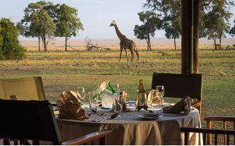 dinner with giraffe view