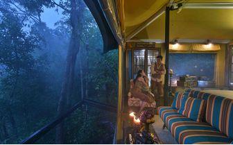 shinta mani wild forest