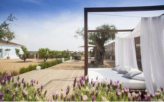 Luxury hotel garden