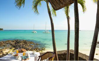royal palm breakfast view