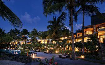 royal palm nighttime
