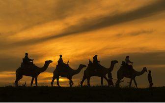Camel trekking activity at sunset