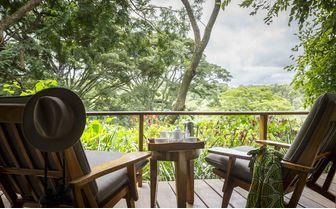 Cottage Shamba terrace