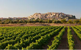 Luxury Spain