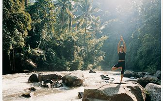 Tree pose in the jungle