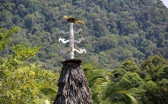 Hornbill sign on longhouse