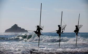 Stick fishermen in Sri Lanka