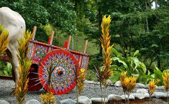 Colourful Costa  Rican cart