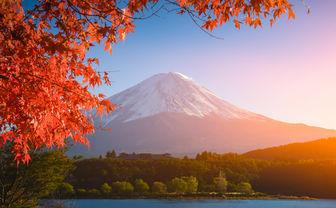 Autumnal colours at Mount Fuji