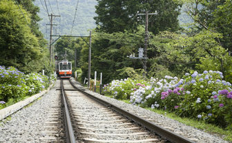 Train tracks near Hakone