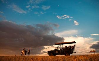 Safari at Desert Rhino, luxury camp in Namibia