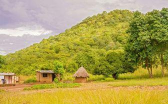 Huts in Zambia