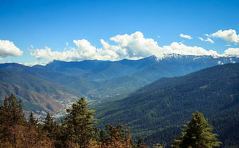 Lush mountain views