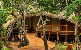 Chena Huts walkway and cabin