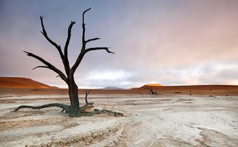 Barren landscape in South Africa