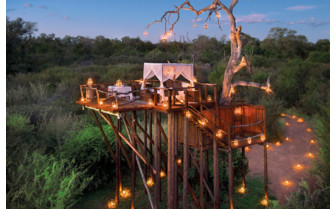 The treehouse at the hotel