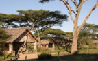 Cottages at Ndutu Safari Lodge
