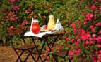 Breakfast in the hotel garden