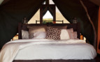 Picture of bedroom at Sal Salis Ningaloo Reef