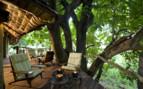 Terrace at Lake Manyara Tree Lodge