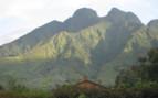 Sabyinyo Silverback Lodge Rooftops