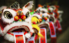 Chinese Festive Lion Heads