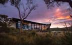Saffire Freycient sunrise