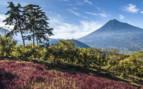 Agua Volcano in Guatemala
