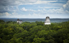 Canopy of Temples in Tikal National Park