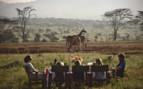 Giraffe Watching at the Enasoit