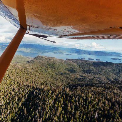 Flight safari Alaska