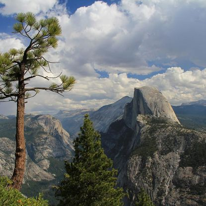 Half Dome view, Yosemite