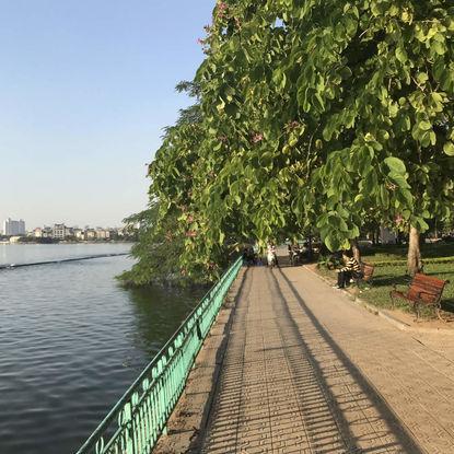 Garden in Hanoi