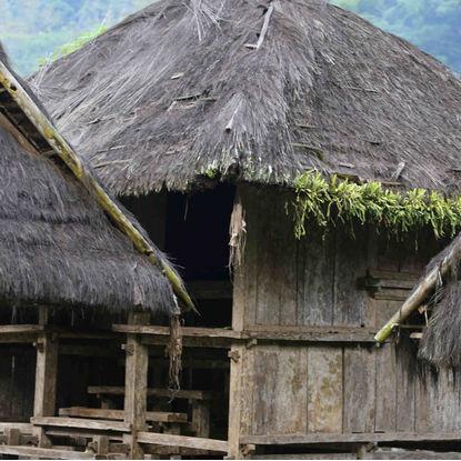 Hut in Tenganan