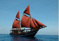 tiger_blue_full_sails