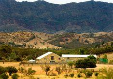 Arkaba Station South Australia