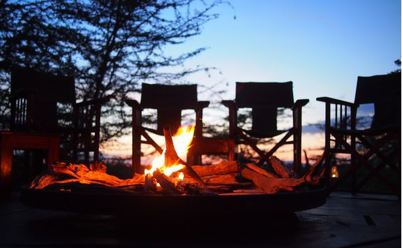 Campfire, South Africa