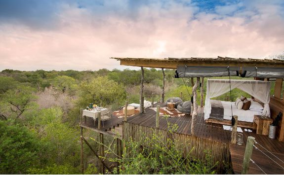 View across the bush from the treehouse