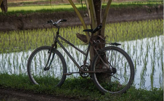 cycle indonesia