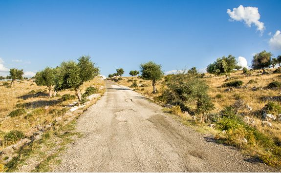 Country Road in Puglia