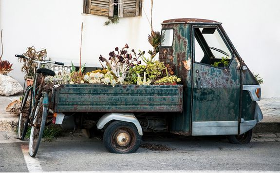Flowers in a van, Puglia