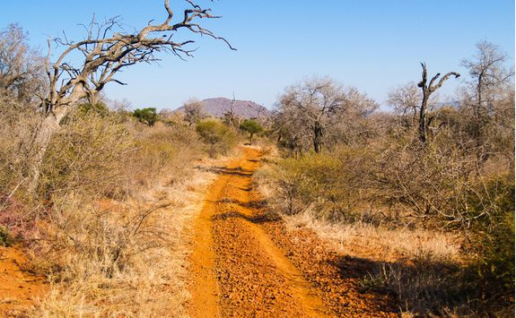 Madikwe Road, South Africa