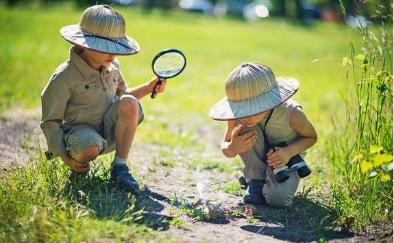 Kids bugs