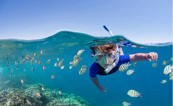 Kid snorkelling