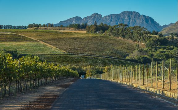 cape winelands road